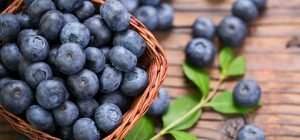 high antioxidant food sources