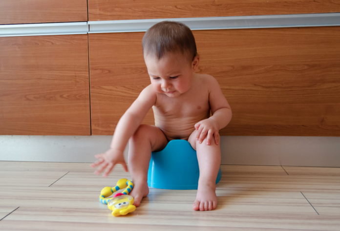 start potty training now